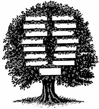 Trees, Virtual and Real