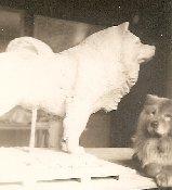 Real Tatoun looking at faux Tatoun, 1938