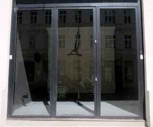 Display window of the butcher shop