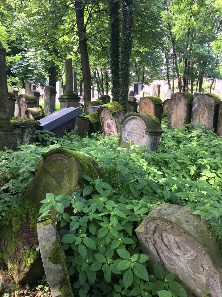 A Grave Concern: Help Restore the Tarnow Jewish Cemetery